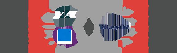 Zendesk Blueprint Azure DevOps Server (TFS) Entities Mapping