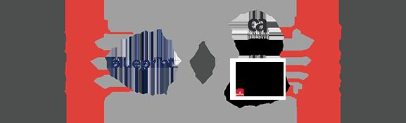 Blueprint CA SDM Rally Software Integration